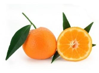 Huile à la Mandarine